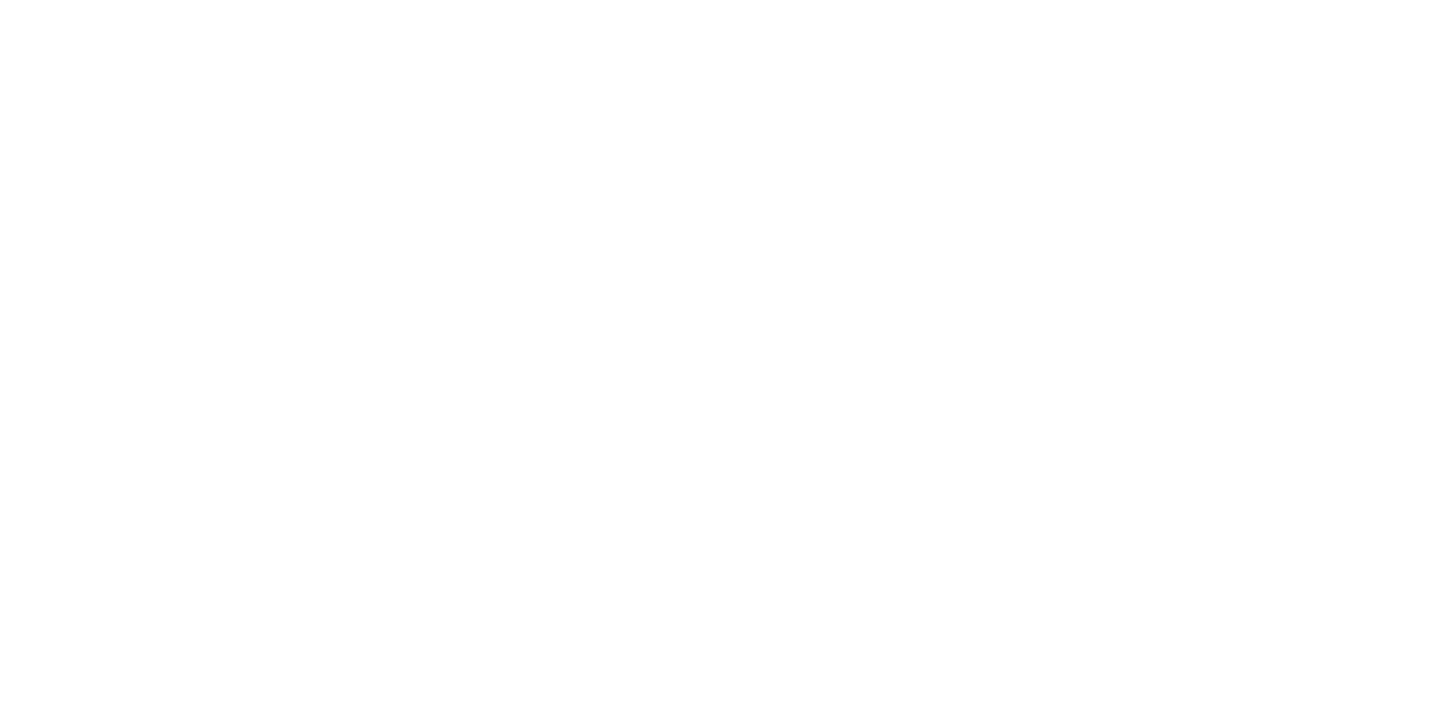 vision11 Karriere-Boost